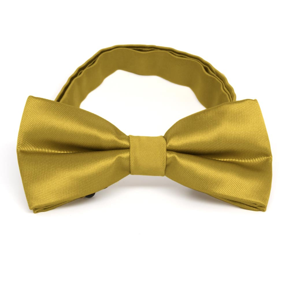 Gold Band Collar Bow Tie