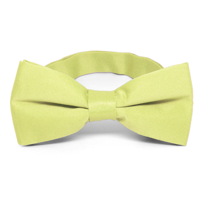 Lemon Lime Band Collar Bow Tie