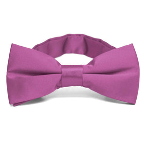 Orchid Band Collar Bow Tie