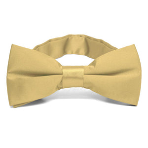 Pale Gold Band Collar Bow Tie
