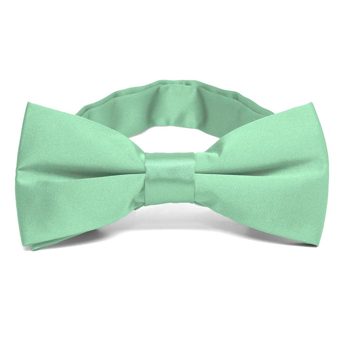 Seafoam Band Collar Bow Tie