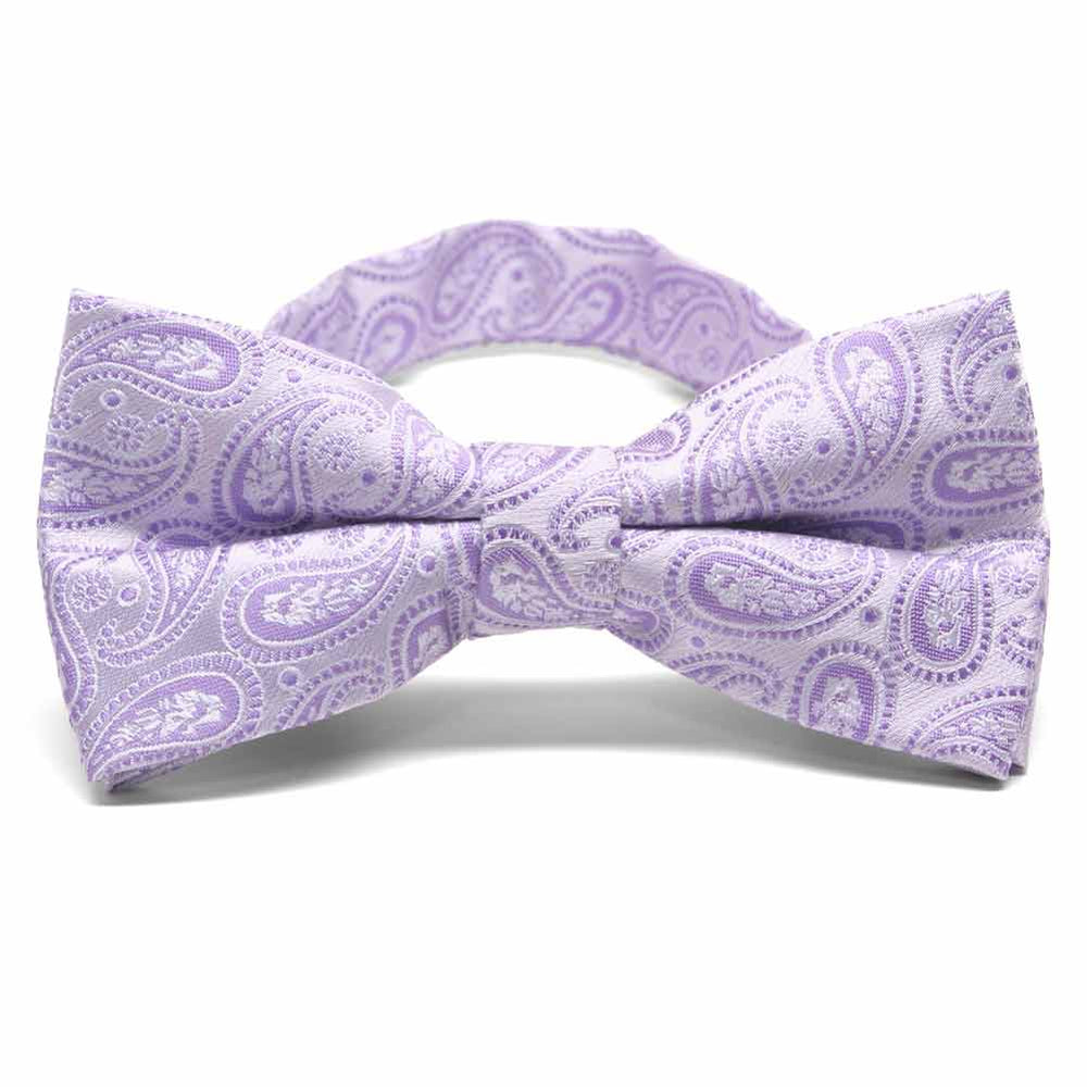 Thistle Purple Darlene Paisley Band Collar Bow Tie