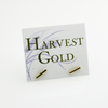 Gold Bar Stud Earring in 14k Yellow