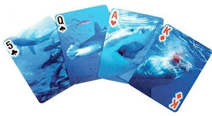 Shark Playing Cards 3D
