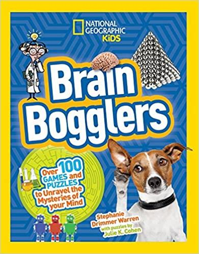 Brain Bogglers: Over 100 Games
