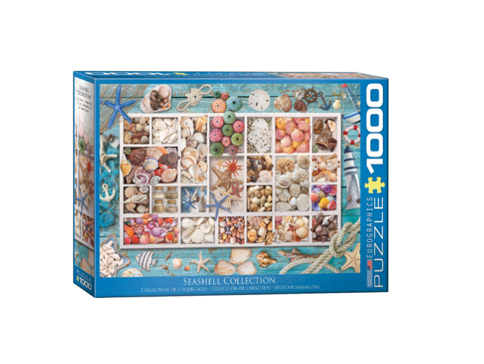 Seashell Collection - 1000 piece