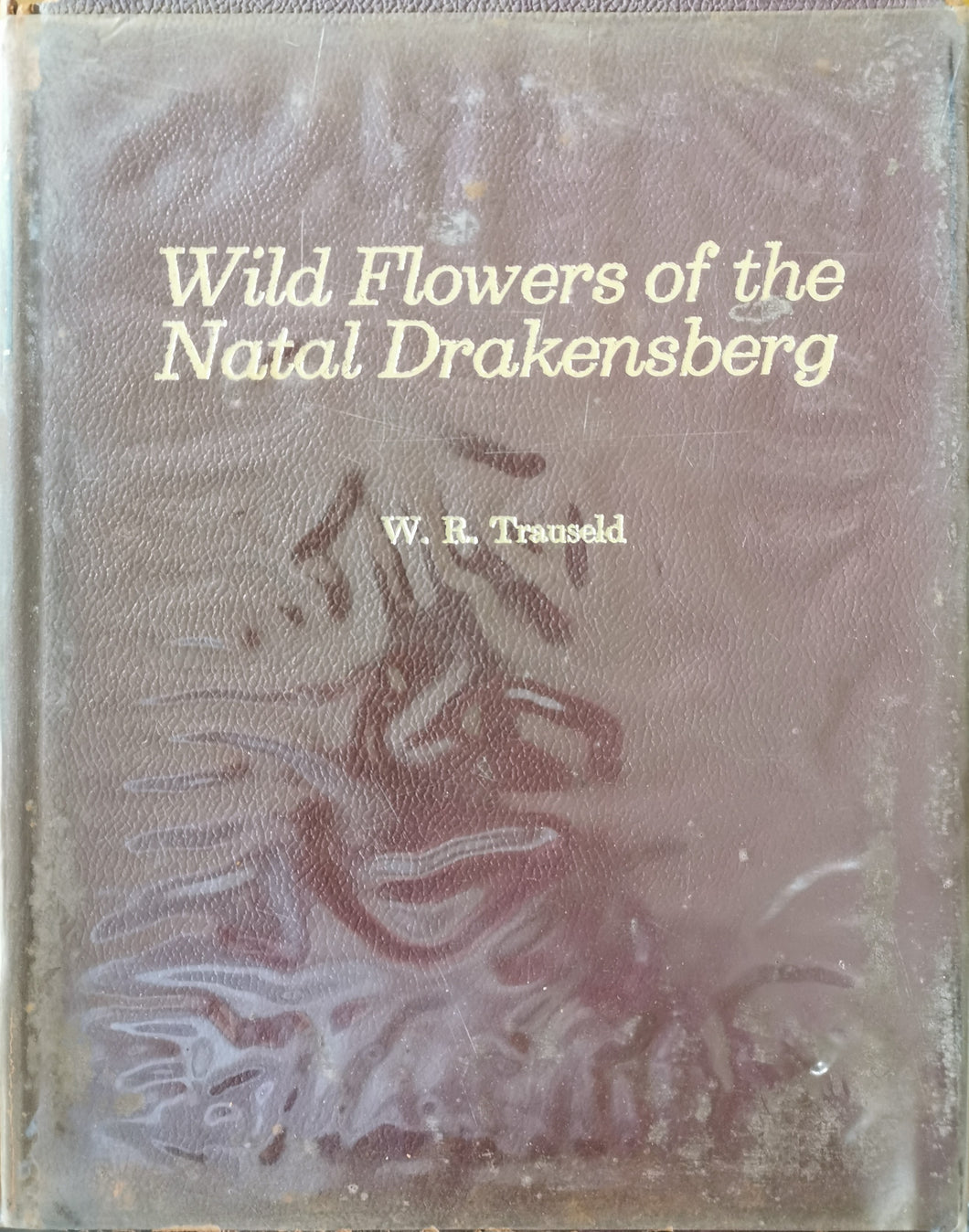 Wild Flowers of the Natal Drakensberg - W.R. Trauseld