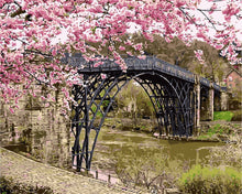 Load image into Gallery viewer, Cherry Blossom Bridge