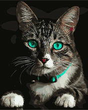 Load image into Gallery viewer, Piercing Blue Cat Eyes