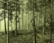 Load image into Gallery viewer, Eerie Forest