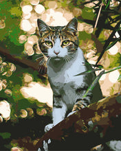 Load image into Gallery viewer, Just a Cat in a Tree