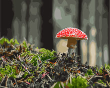 Load image into Gallery viewer, Forest Mushroom