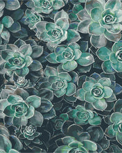 Load image into Gallery viewer, Succulent Delight