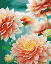 Load image into Gallery viewer, Dahlia Dream