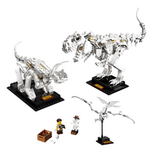 Load image into Gallery viewer, LEGO Ideas Dinosaur Fossils