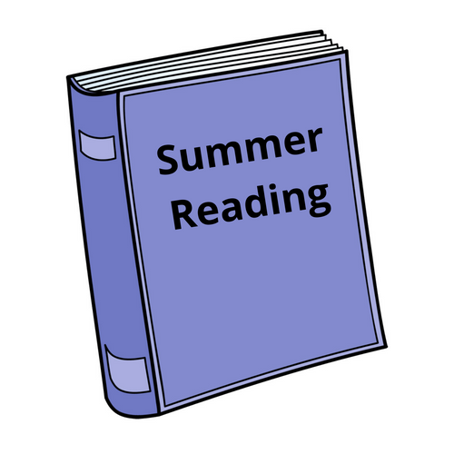 Summer Reading Book Bundle