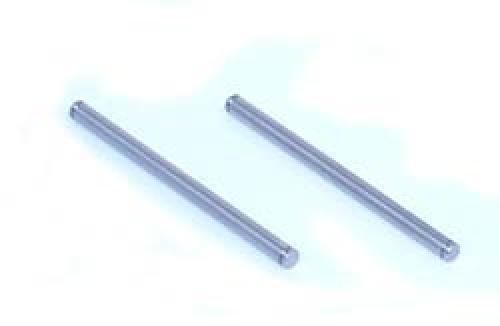 XXX Inner Rear Hinge Pins