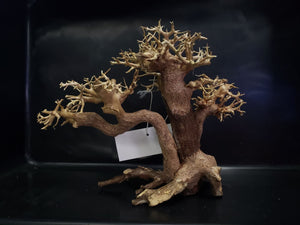 Multi-trunk Bonsai Driftwood, Large