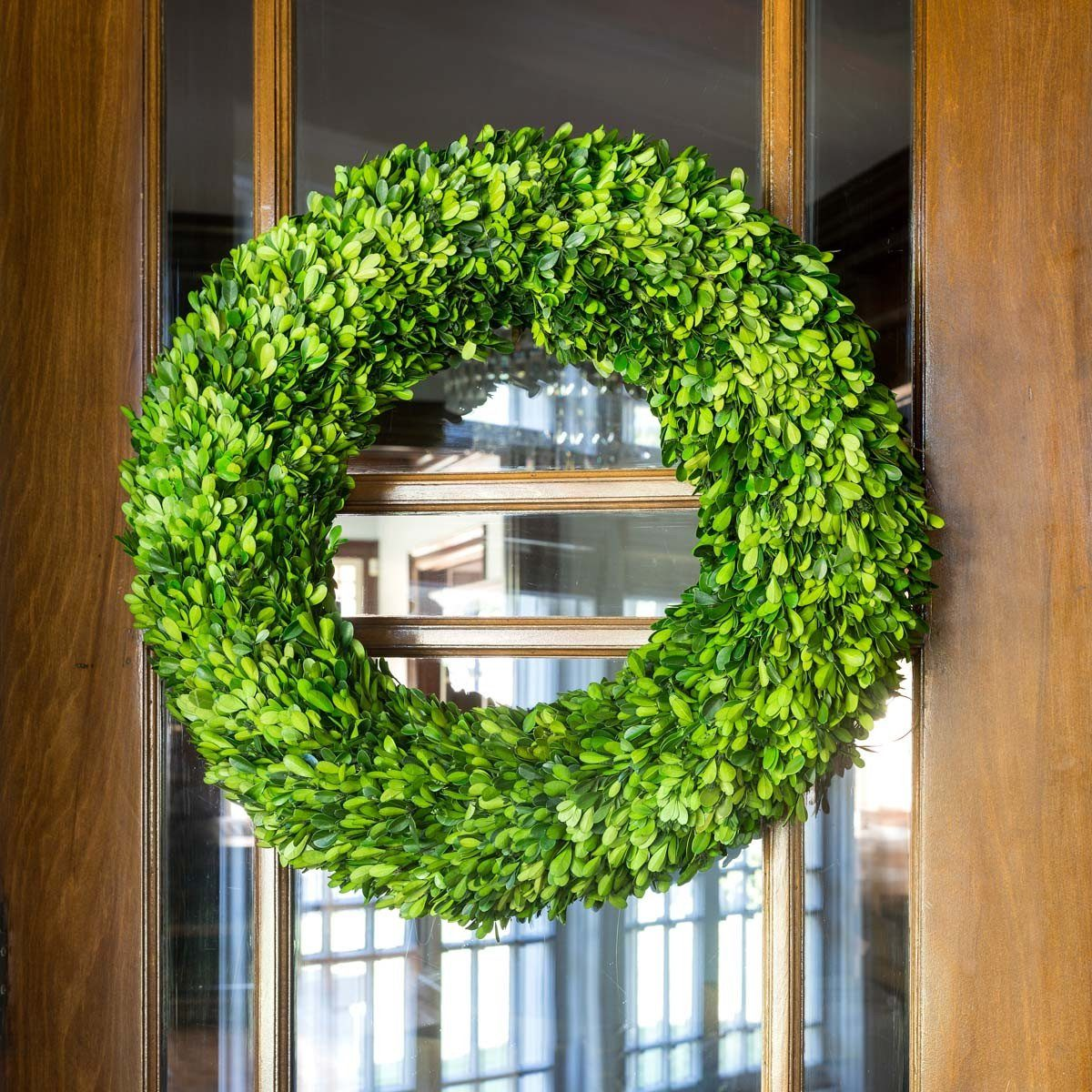 Preserved Boxwood Wreath, Large - Sixty Park Lane