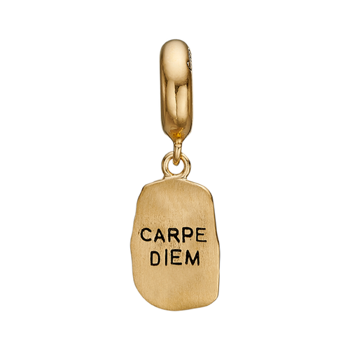 The way one chooses to live one's life is what makes one, and there is nothing better than Seizing The Moment & The Day. Embrace your way of life and remind yourself to do so with this beautifully designed Carpe Diem bracelet that proudly announces this Latin aphorism. For that special touch and to make our Charm Collection even more special, all the charms in our collection are delicately and expertly handcrafted in 925 Sterling Silver and finished with Rhodium Plating.