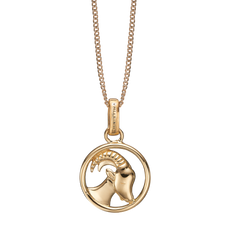 Load image into Gallery viewer, Zodiac Capricorn Necklace Gold