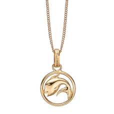 Load image into Gallery viewer, Zodiac Pisces Necklace Gold