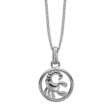 Load image into Gallery viewer, Zodiac Scorpio Necklace Silver