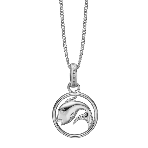Zodiac Pisces Necklace Silver