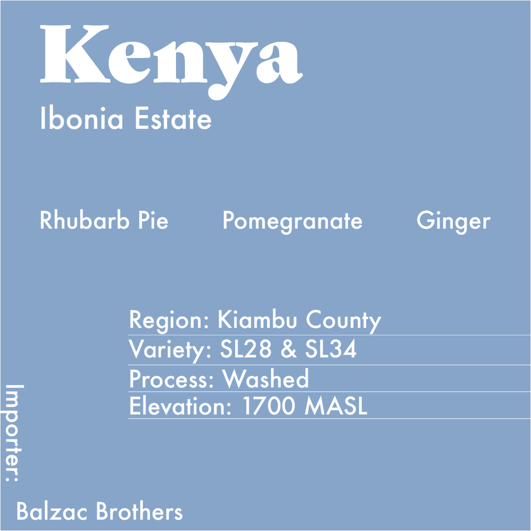 Info Card about the Kenya