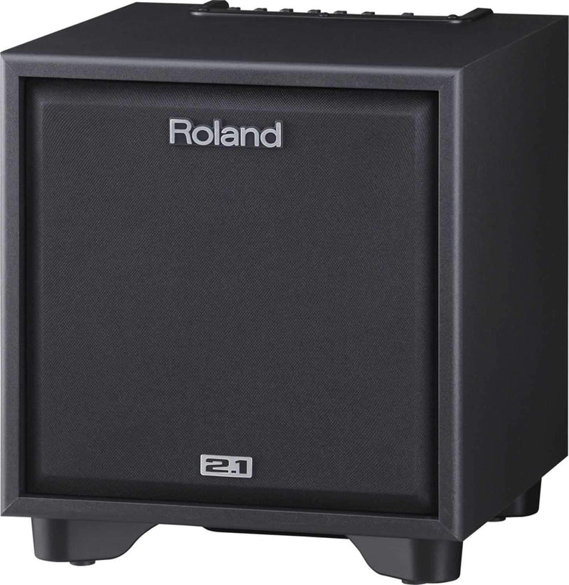 Roland CM-110 100W 2.1 Monitor System (Black) - PSSL ProSound and Stage Lighting