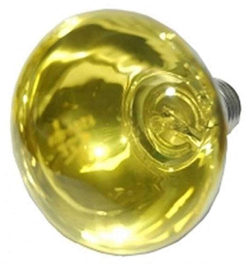 Eliminator EL137Y Replacement Bulb-Yellow - PSSL ProSound and Stage Lighting