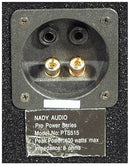 Nady PTS515 12-Inch 2-Way Speaker - PSSL ProSound and Stage Lighting