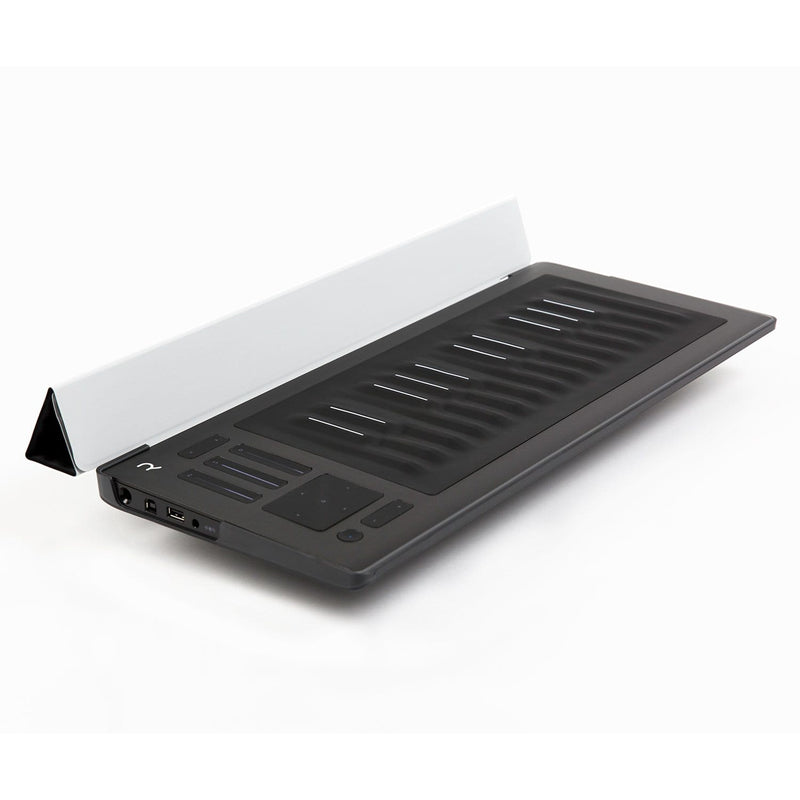 ROLI Seaboard Rise 25 Flip Case - Silver - PSSL ProSound and Stage Lighting