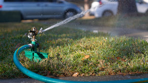 Tips For Watering Your Lawn This Summer