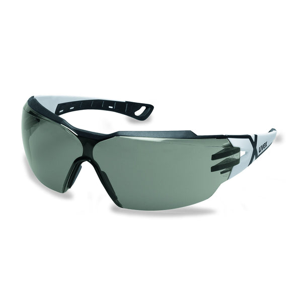 Pheos CX2 Safety Glasses - Grey