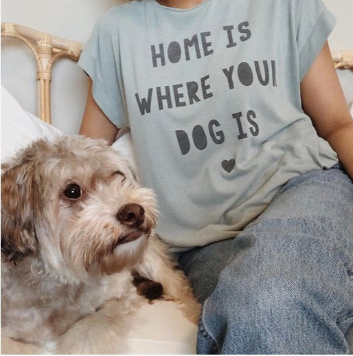 Home Is Where Your Dog Is - Sweet Soul