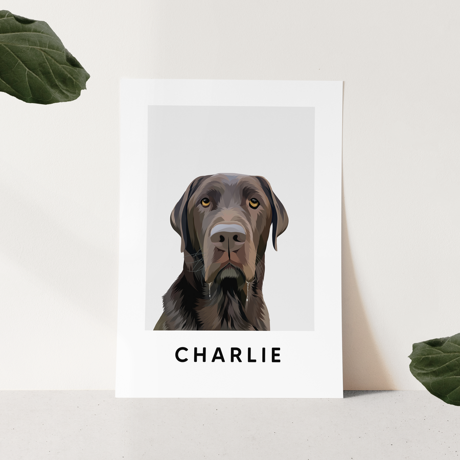 minimalist custom pet portrait cloud grey background