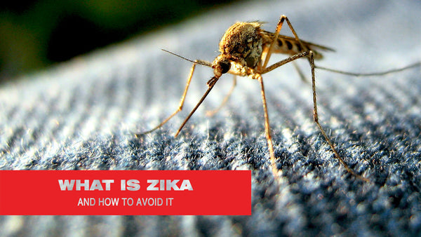 What is Zika And How to Avoid It