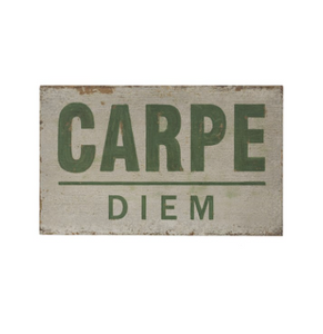 carpe diem swooden sign