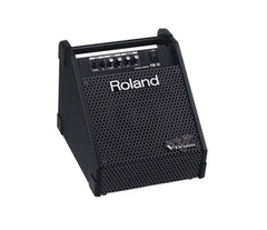 Roland PM-10 Amplifier