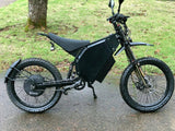 Electric Bike Delfast Top 2.0