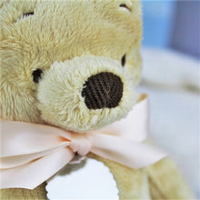 Load image into Gallery viewer, Personalised 20cm Classic Winnie The Pooh Soft Toy