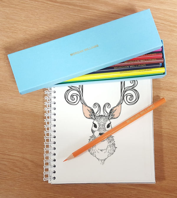 12 Personalised Colouring Pencils In Aqua Box