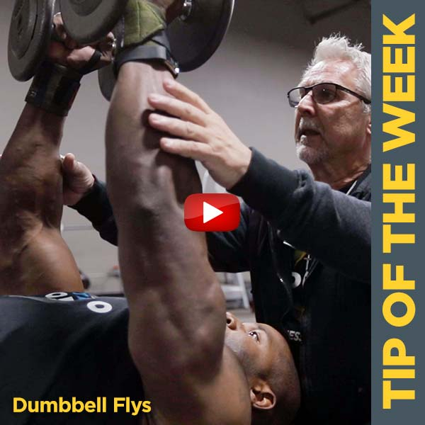 Coach Kim Oddo Building The Chest with Dumbbell Flys