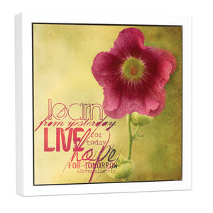 Open Art - Hollyhock Live