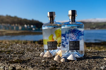 Isle of Bute Oyster & Gorse Gins