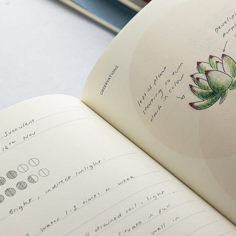Studio Milligram Grow Life Journal with an open page showing a circle layout with a sketch of a small succulent