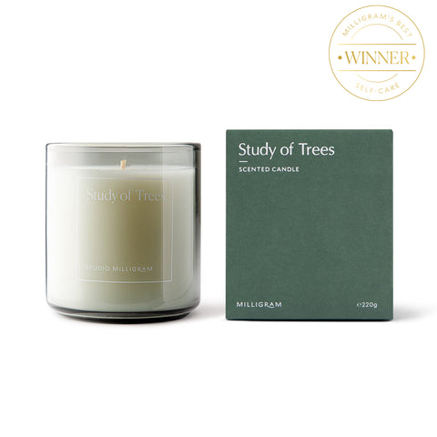 Studio Milligram Scented Candle in Study of Trees scent; a cream-coloured candle in a clear glass holder sits beside a tree-green cube box with white writing that says Study of Trees