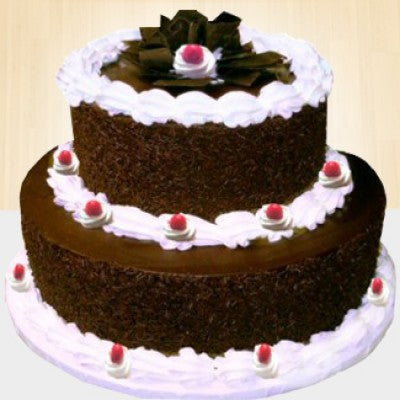 2 TIER SPECIAL CHOCOLATEY CAKE