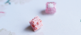 [PRE-ORDER] PINOKO SWITCHES